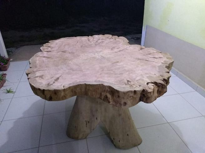 reidalenha